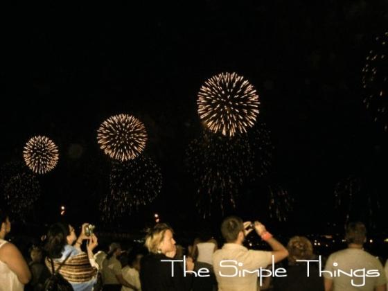 Macy's Fireworks 2009