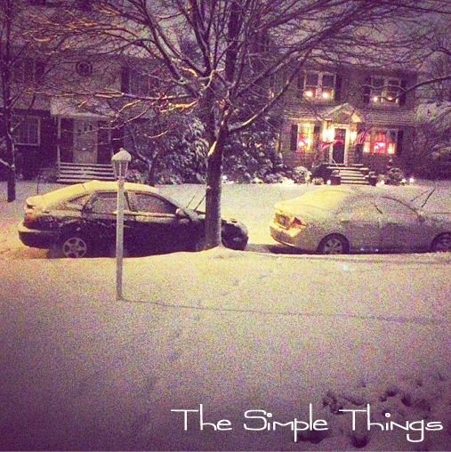 "Snow 2013 ""The Simple Things"""
