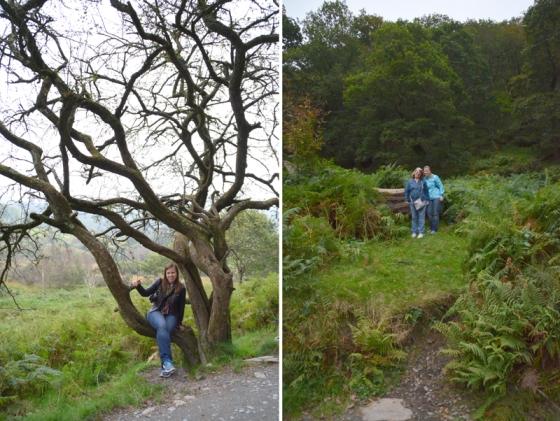 Ireland 2011 - Glendalough