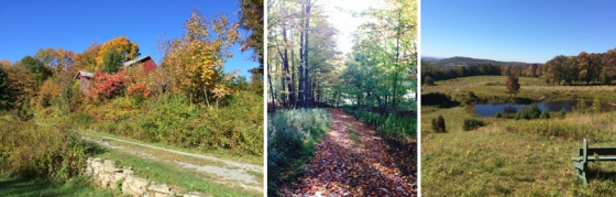 Buck Brook Acres Hiking