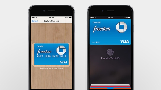 Apple Pay Interface