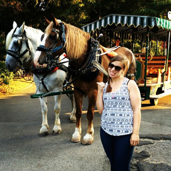 Stanley Park Horses