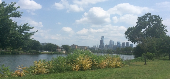 Bike Riding the Schuylkill