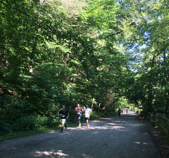 Running the Wissahickon