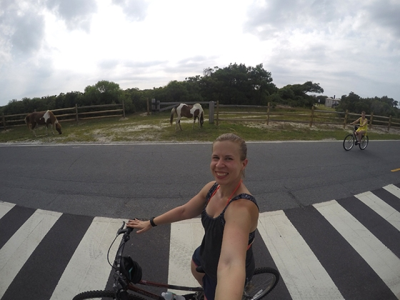 Bike Riding at Assateague National Seashore