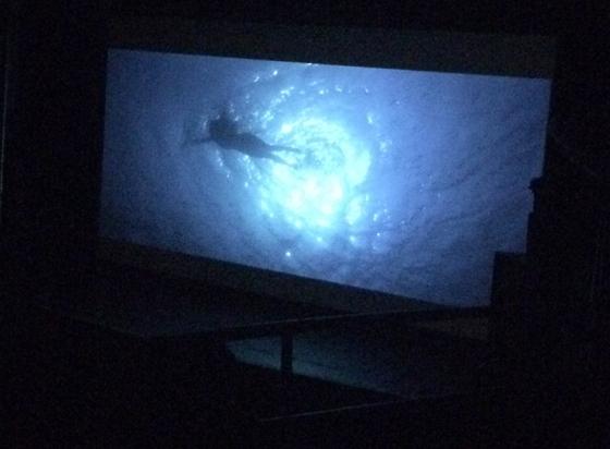 Trocadero Movie Night - Jaws